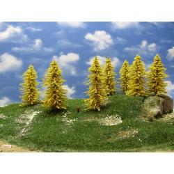 TT - stromy,modříny 13-14m,12ks (32/M1/TT)