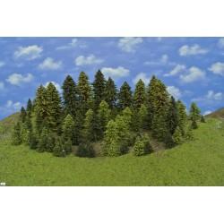 LES HO4, smrky, borovice, modříny, 3-18 cm