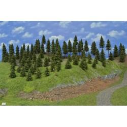 LES TT38 , borovice,modříny, 8-14 cm ( TT38)