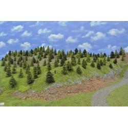 LES N7 ,smrky, borovice, modříny, 3-8cm (N7)