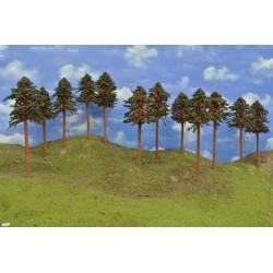 HO - stromky,borovice,výška 18-20cm,12ks (43/B2/HO)
