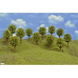 HO - stromky,listnaté,výška 8-9cm,12ks (49/Z1/HO)