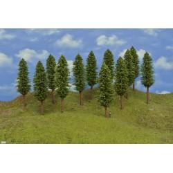 HO - stromky,listnaté,výška 17-18cm,12ks (53/Z2/HO)