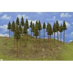 TT - stromy,smrky,výška 17-20cm,20ks (17/S2/TT)