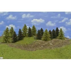 LES HO31, borovice, modříny, 9-14 cm