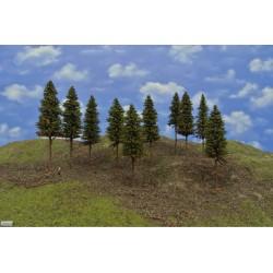 N-smrčky s kořeny,výška 14 cm,10ks ,7/S2K/N