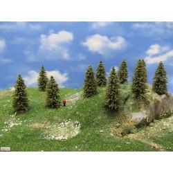 TT - stromy,smrky,výška 5-8cm,30ks (5/S1/TT)