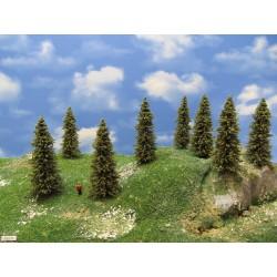 TT - stromy,smrky,výška 8-10cm,20ks (6/S2/TT)