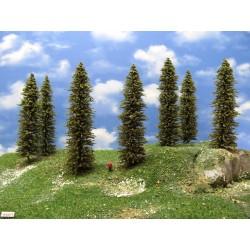 TT - stromy,smrky,výška 18-19cm,12ks (16/S2/TT)