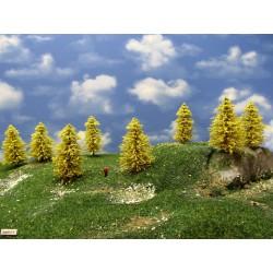30M1TT-stromy,modříny 6-9cm,20ks