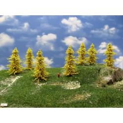 TT - stromy,modříny 8-11cm,20ks (31/M1/TT)